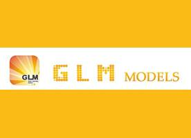 GLM - Great Limousine Models