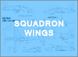 Squadron Wings